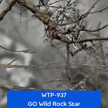 go wild rock star