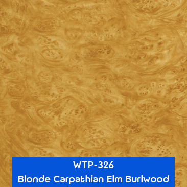 blonde carpathian elm burlwood wood hydrographics