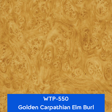 golden carpathian elm burl wood hydrographics